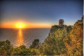 Torre defensa Banyalbufar — Stock Photo