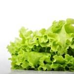 Fresh lettuce — Stock Photo #12864405