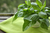 Fresh green basil — Stock Photo