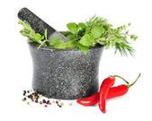 Mortar with fresh herbs — Stock Photo