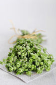 Bunch of blooming marjoram — Stock Photo