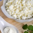Cottage cheese with sour cream — Stock Photo