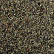 Stock Photo: Dried savory