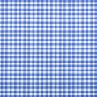 Blue checkered fabric — Stock Photo #21311405