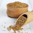 Mustard seeds — Stock Photo