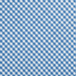 Blue checkered fabric — Stock Photo #22225943