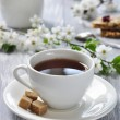 Cup of tea — Stock Photo #24609871