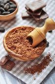Cocoa powder — Stock Photo
