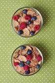 Cereal flakes — Zdjęcie stockowe