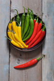 Multi colored hot chili peppers — Stock Photo