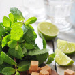 Ingredients  for coctail mojito — ストック写真