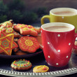 Hot chocolate with ginger cookies — Lizenzfreies Foto