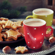 Hot chocolate with ginger cookies — Stock Photo