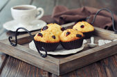 Muffins with dried cranberry — Stock Photo