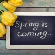 Spring is coming — Stock Photo #42755843