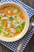 Sopa de pollo con pasta — Foto de Stock