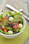 Salad with tomato and mozzarella cheese — Foto de Stock