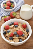 Whole-grain flakes — ストック写真