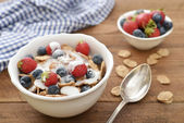 Whole-grain flakes — Stockfoto