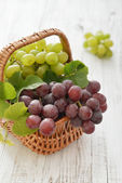 Red and green grapes — ストック写真