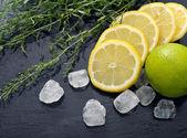 Tarragon with lemon, sugar and lime — Stok fotoğraf