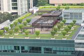 """Garden on the roof"" concept — ストック写真"
