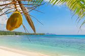 Typical beach on Mahe island, Seychelles — Stock Photo