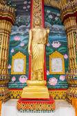 Standing statue of Buddha in Phuket, Thailand  — Stock Photo