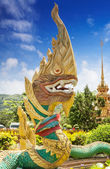 Decorative element Golden Naga, as part of typical Thai temple d — Stock Photo