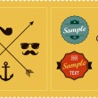 Hipster elements and labels — Stock Vector