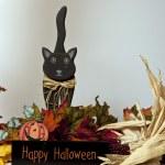 Happy halloween — Stock Photo #13282787