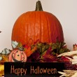 Happy halloween — Stock Photo #13408367