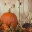 Pumpkin and fall foliage — Stock Photo #14729245