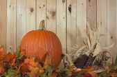 Pumpkin and fall foliage — Stock Photo