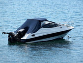 Speed boat — Stock Photo