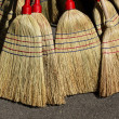 Stock Photo: Nature brooms