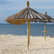 Beach umbrella — Stock Photo #13757116