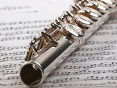 Flute and notes — Stock Photo