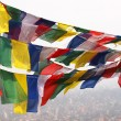 Flags in Nepal — Stock Photo