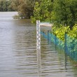 Flooded fence — Stock Photo