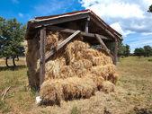 Сарай сена — Стоковое фото