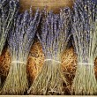 Dried lavender bunches — Stock Photo #16791831