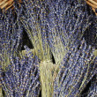 Stock Photo: Dried lavender bunches