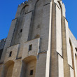 Popes Palace in Avignon — Stock Photo #31898123