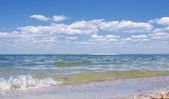 Zomer landschap met zee en blue sky — Stockfoto