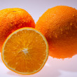 Navel seedless orange isolated on white — Stock Photo