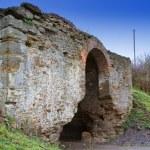 ������, ������: Zaslavskaya pomfret Mezhyrich fortification XVI XVII centurie