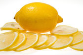 Lemon fruit isolated — Stock Photo