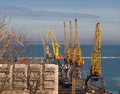 Cargo crane in port Odessa — Stock Photo