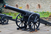 Old cannon in Dubno — Stock Photo